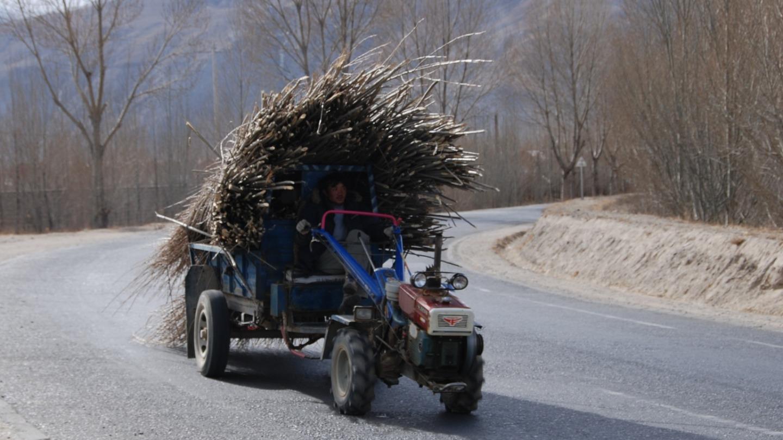 Vendita Motoagricole e Transporter Agricoli