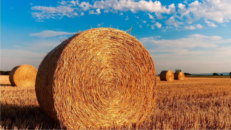 Assistenza Macchine Agricole Bergamo